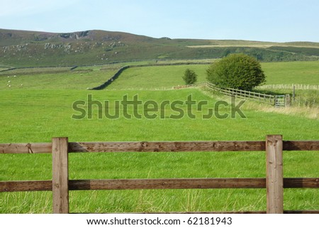 Farmland in Yorkshire Dales with sheep in background - stock photo
