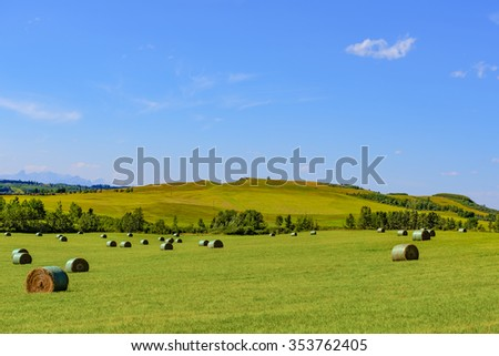 Farmland landscapes from the foothills of Alberta Canada in summer