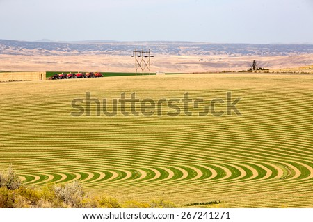 Farmland with contoured planting for pivot irrigation showing the alternating curved pattern allowing for the rotation of the wheeled sprinkler trusses - stock photo