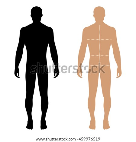 body male types silhouette man naked stock vector