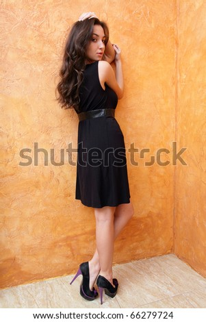 Fashion photo of a young beautiful lady in dress with nice shoes - stock photo