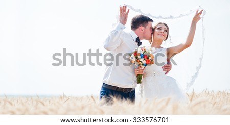 fashionable and happy wedding couple kissing at wheat field at sunny day