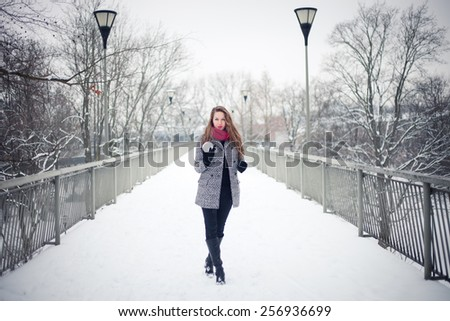 Fashionable young woman outdoors on a snowy winter day - stock photo