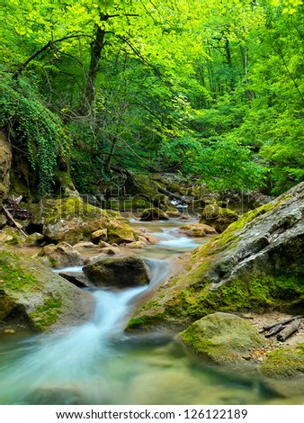 Fast creek in canyon. Summer landscape - stock photo