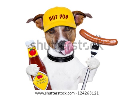 fast food dog with hot dog and ketchup licking with tongue - stock photo