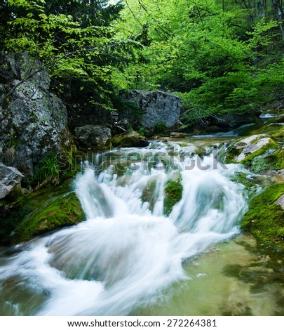 Fast stream in the Grand Canyon of Crimea. All around are green and fresh, it's spring.