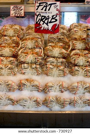Fat Dungeness crabs at the pike place market neatly arranged on ice - stock photo
