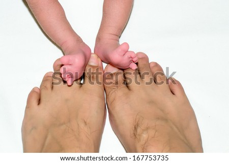 father and baby feet - stock photo