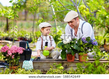 father and son care for plants in the garden - stock photo