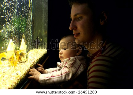father and son looking at aquarium - stock photo