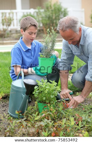 Father and son planting flowers in house garden - stock photo