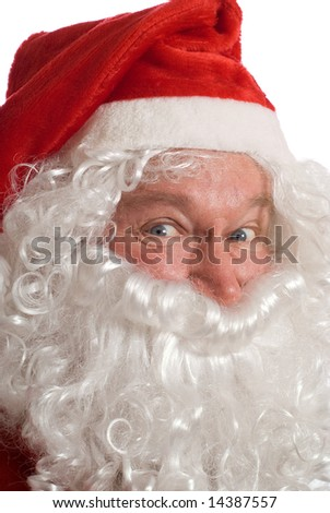 Father Christmas portrait with jolly look in his eyes - stock photo