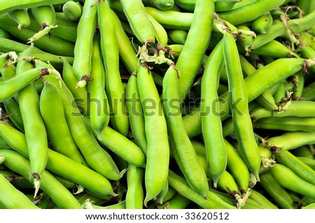 Fava Beans - stock photo