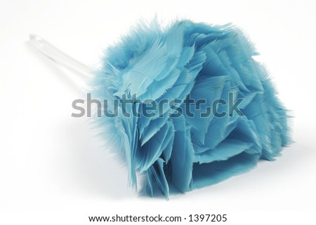 Feather duster - stock photo