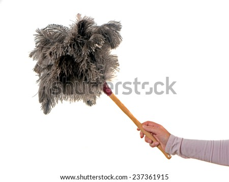 feather duster with female hand on white Background - stock photo