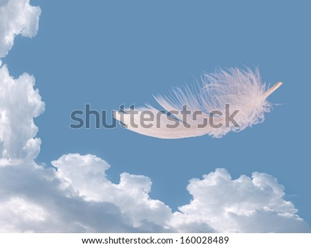Feather floating free over sky - freedom, well being concept - stock photo