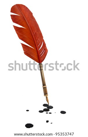 Feather quill - stock photo