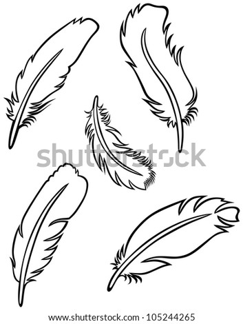 Feather set. Raster version
