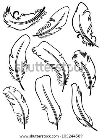 Feather Set. Raster version - stock photo
