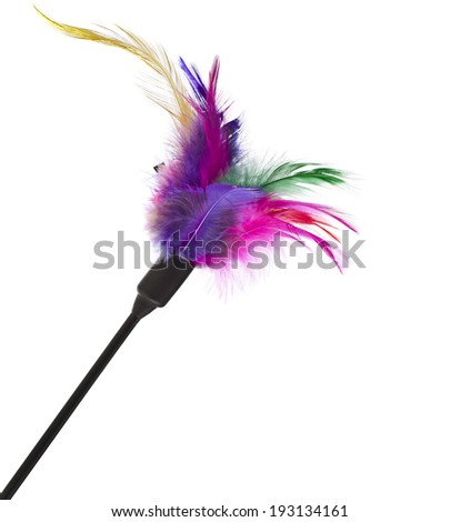 feather toy for cats on a white background - stock photo