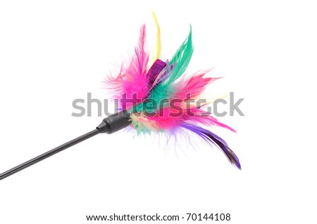 Feathered Pole Cat Toy on White Background - stock photo