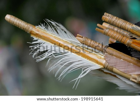 feathers for the stabilization of the old wooden hunting arrow and bird feathers - stock photo