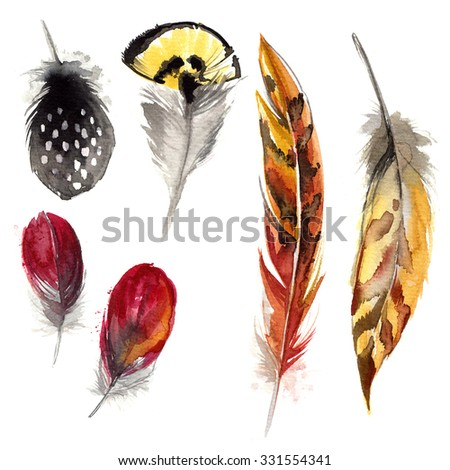 Feathers painted with watercolors on white background. Watercolor color beautiful feathers.