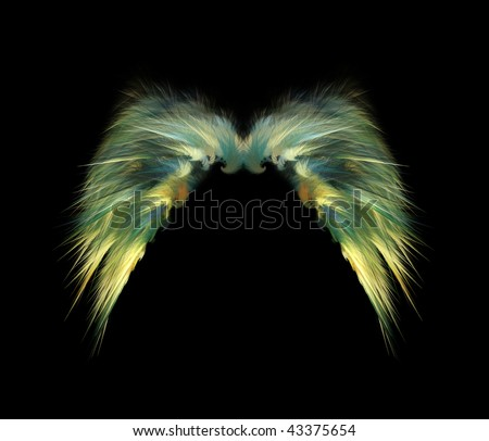 Feathery Angel Wings over black background - stock photo