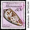 FEDERATED STATES OF MICRONESIA - CIRCA 1989: A 50-cent stamp printed in the Federated States of Micronesia shows the textile cone snail shell, Conus textile, circa 1989 - stock photo