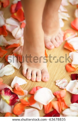 Feet and rose petals - stock photo