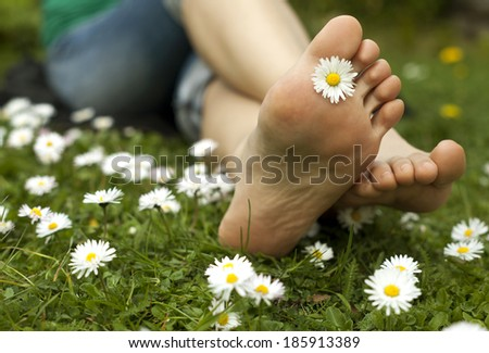 Feet in grass on meadow with chamomile. - stock photo
