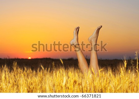 Feet in the field at sunset - stock photo
