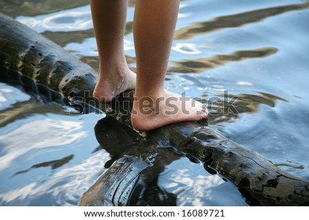 Feet of a child standing on a log in the water