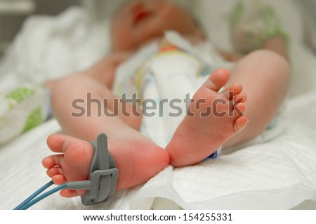 feet of new born baby sick in incubator chamber in hospital - stock photo