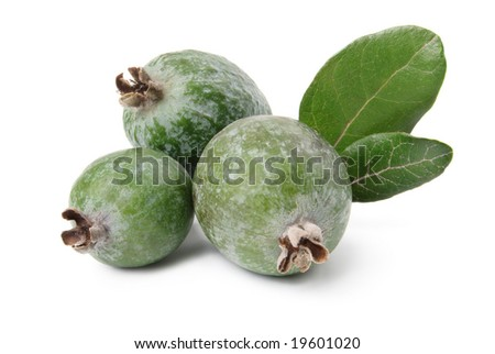 Feijoa and leaves isolated over white - stock photo