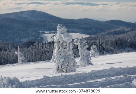 Feldberg the highest Mountain in the Black Forest