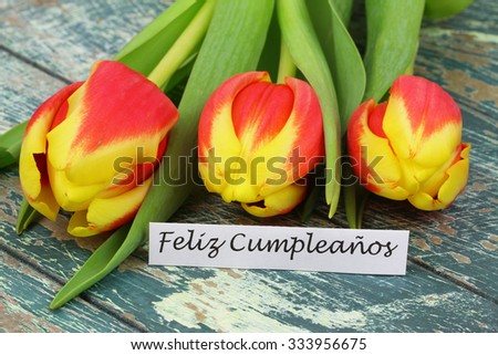 Feliz Cumpleanos (which means Happy Birthday in Spanish) card with colorful tulips on rustic wooden surface