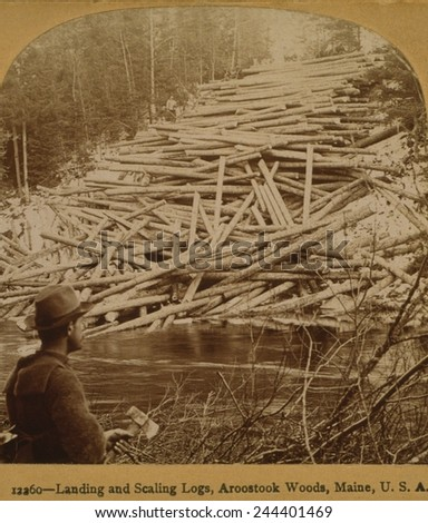 Felled logs ready to enter the Aroostook River. A lumberjack in the foreground holds axe. Aroostook Woods, Maine, 1903. - stock photo