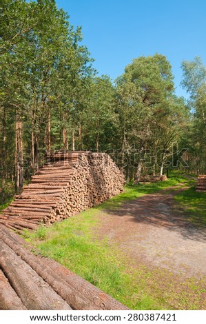 Felled tree trunks piled at the side of agricultural road; forestry sector - stock photo