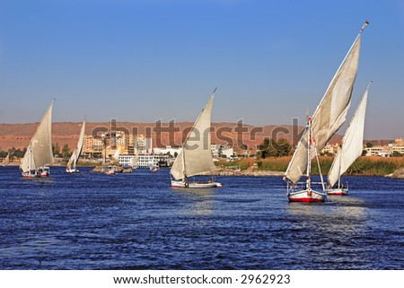 feluccas sailing on the river nile near aswan in egypt
