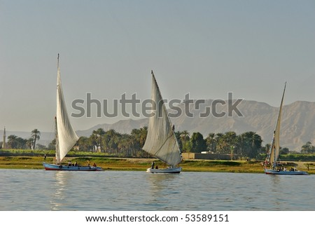 Feluccas, the traditional Egyptian sailing boats on the Nile