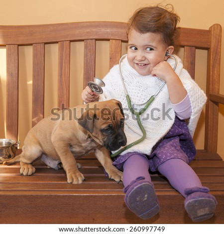 Female baby vet examining puppy. sitting on a wooden bench - stock photo