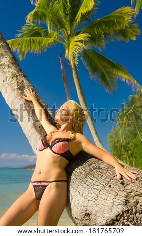 Female Beauty Under Palm  - stock photo