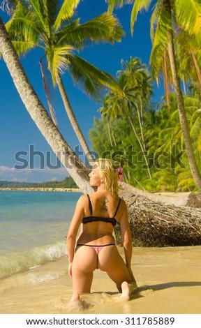 Female Beauty Under Palm  - stock photo