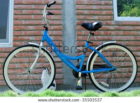 Female bicycle against the house - stock photo