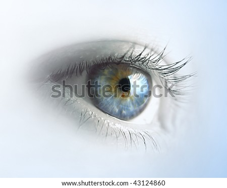Female blue eye - stock photo