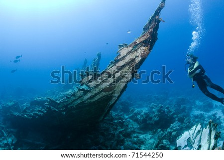 Female diver at a shipwreck in the Southern Red Sea, Egypt - stock photo