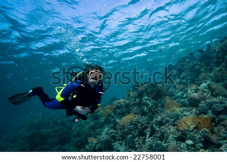 Female diver floating over a beautiful coral reef in the Red Sea, Egypt - stock photo