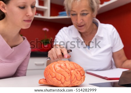 female doctor explains an sudent details of an brain with a plastic model