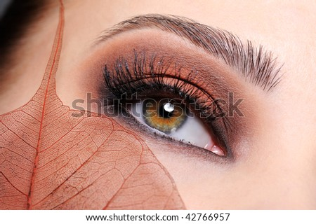 Female eye with brown bright make-up and leaf at face - stock photo
